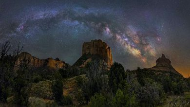 Photo of Spectacular Milky Way Photos by David Lane (13 Photos)