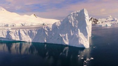 Photo of Stunning Drone Footage of Antarctica (Video)