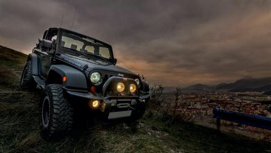 Photo of Afternoon Drive: Off-Road Adventures (25 Photos)