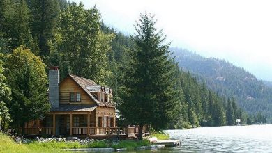 Photo of All Need is a Rustic Little Cabin in the Woods (28 Photos)