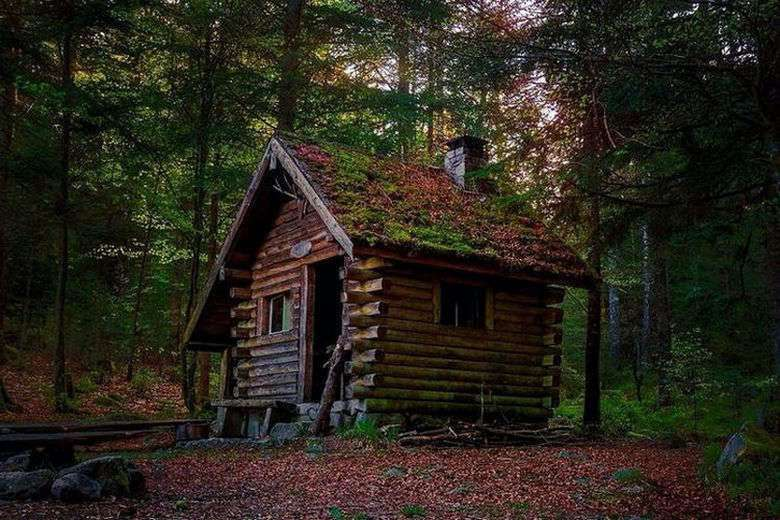 All I Need Is A Little Cabin In The Woods (38 Photos)