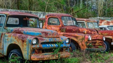 Photo of These Abandoned Trucks Just Need a Little TLC (19 Photos)
