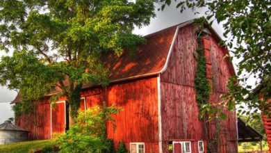 Photo of Picturesque Old Weathered Barns (28 Photos)