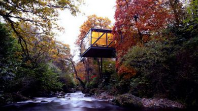 Photo of Stunning Irish Cantilevered Irish House (5 Photos)