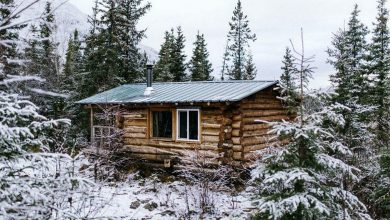Photo of A Little Cabin in the Woods is All We Need (33 Photos)
