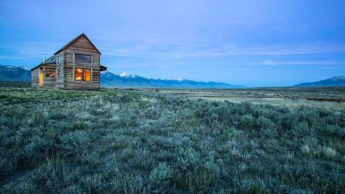 Photo of Perfect Little Cabins Far From Everything (12 Photos)