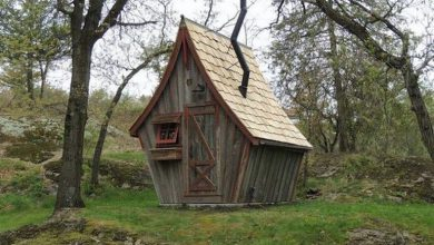 Photo of 15 Amazing Fantasy-Like Cabins