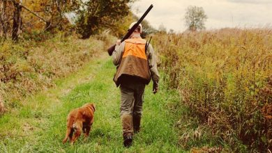 Photo of Daily Man Up (28 Photos)