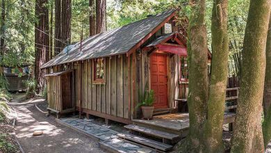 Photo of You Can Own This Perfect Tiny California Cabin (20 Photos)