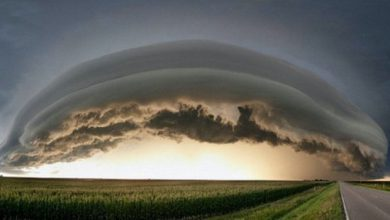 Photo of Mother Nature Seldom Disappoints (26 Photos)