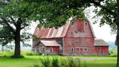 Photo of Picturesque Old Weathered Barns (26 Photos)