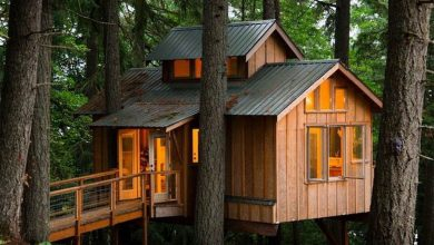 Photo of The 25 Coolest Adult Treehouses