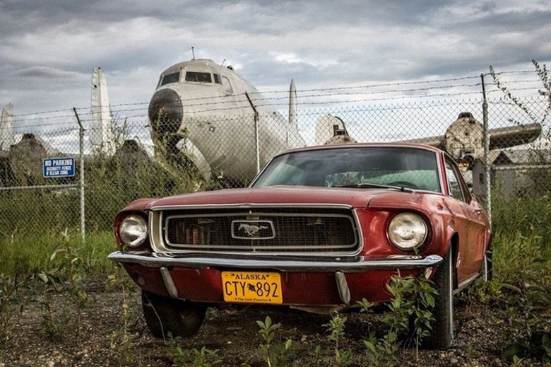 Suburban Men Afternoon Drive: American Muscle Cars (1)