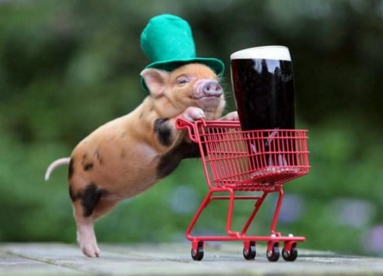 Happy St. Patrick's Day from Suburban Men! (1)