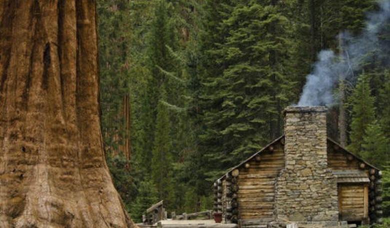 Suburban Men Rise and Shine Outdoors Camping Hiking Hunting Fishingg Hunting Fishingc (1)