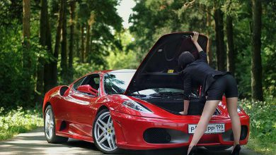 Suburban Men Afternoon Drive: Exotic Luxury and Vintage Cars