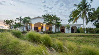 Dream House: Puerto Rican Tropical Paradise